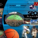 minn_sports_panel1